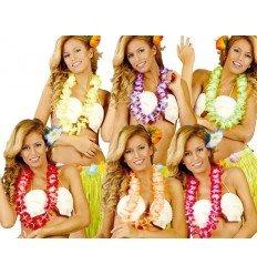Collar Hawaiano de Colores Surtidos 6,5 CMS